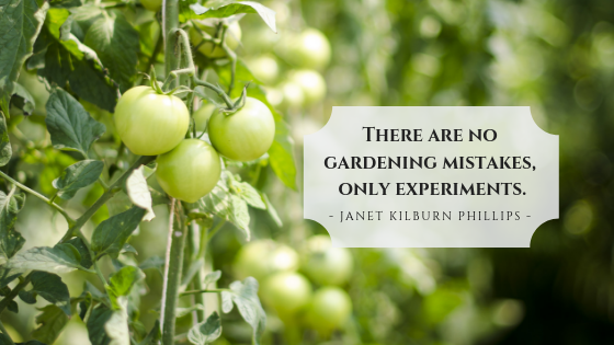 Gardening Mistakes